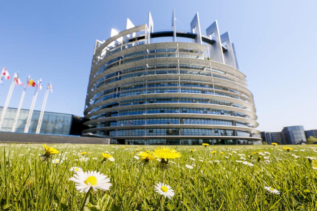 Bild: Europaparlamentet