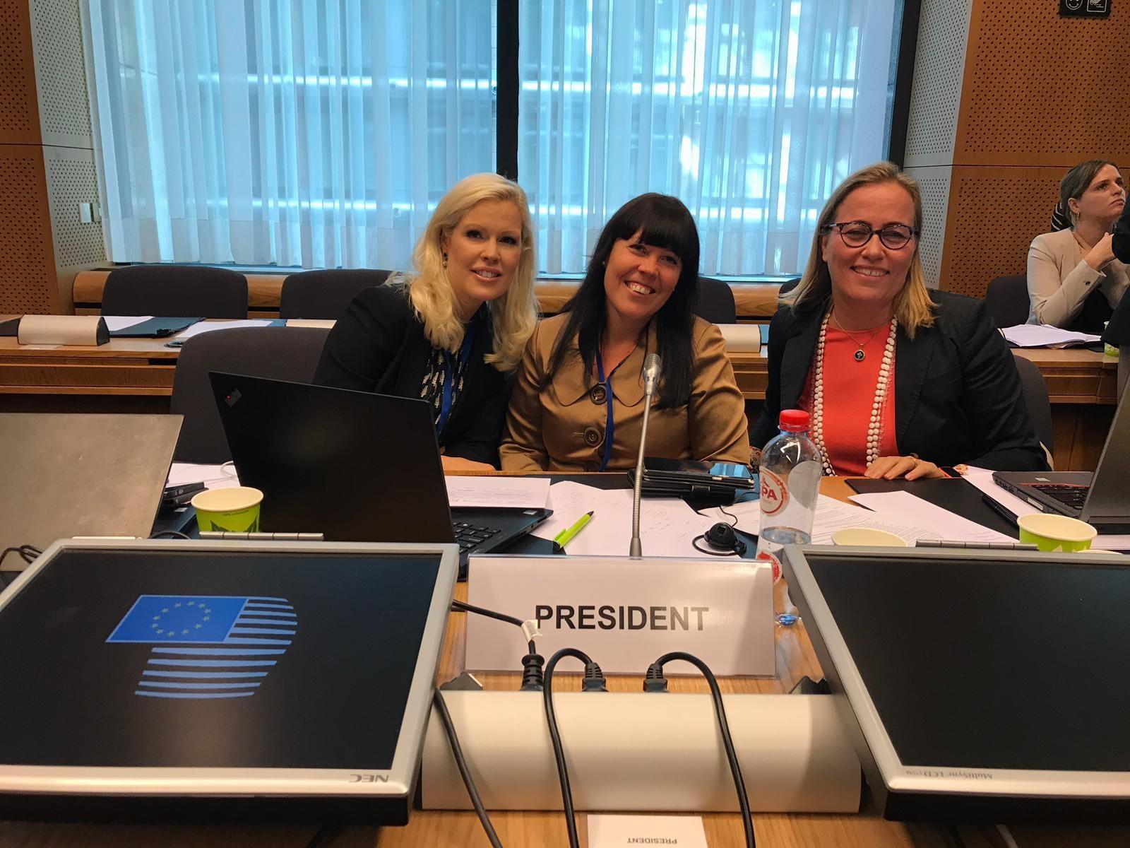 Maria Guseff (keskellä)on toiminut perusoikeuksien, kansalaisoikeuksien ja henkilöiden vapaan liikkuvuuden FREMP-työryhmän puheenjohtajana Suomen puheenjohtajakaudella. Kuvassa myös varapuheenjohtaja Sonya Walkila (vas.) ja Magdalena Marinez-Almeida (oik.) neuvoston sihteeristöstä.